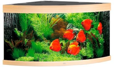 JUWEL AQUARIEN Aquarium »Trigon 350«, 350 Liter, BxTxH: 123x87x65 cm, in versch. Farben kaufen