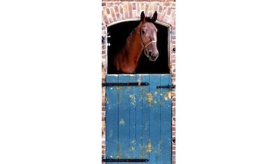 PAPERMOON Fototapete »Horse  -  Türtapete«, BlueBack, 2 Bahnen, 90 x 200 cm kaufen
