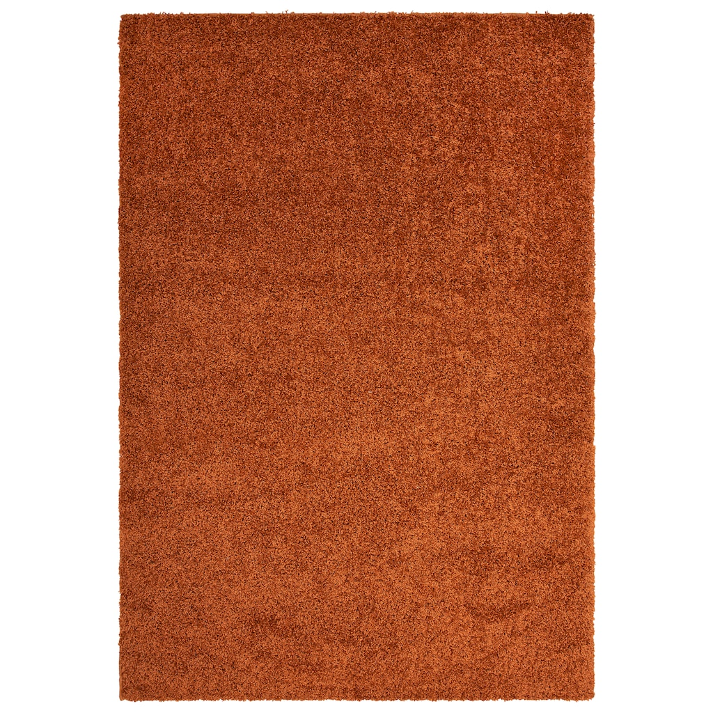 Bruno Banani Hochflor-Teppich »Shaggy Soft«, rechteckig, 30 mm Höhe, gewebt, Wohnzimmer