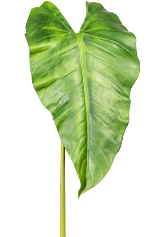 Creativ green Kunstzweig »Callablatt« kaufen