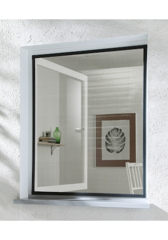hecht international Insektenschutz-Fenster »BASIC«, anthrazit/anthrazit, BxH: 120x140 cm kaufen