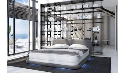 SalesFever Polsterbett, LED-Beleuchtung mit Farbwechsler und inklusive Fernbedienung kaufen