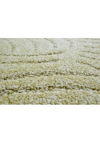 ANDIAMO Teppichboden »Amberg«, Festmaß 500x400 cm kaufen