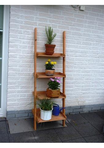 PROMADINO Blumentreppe »Helma«, BxTxH: 58x46x177 cm kaufen