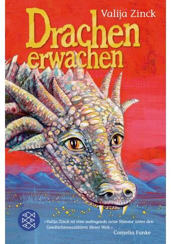 Buch »Drachenerwachen / Valija Zinck, Annabelle von Sperber« kaufen