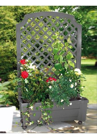 KHW Spalier mit Bewässerungskasten mit Pflanzkasten, BxTxH: 79x35x134 cm kaufen