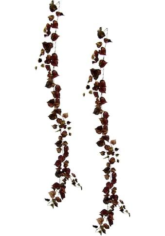 I.GE.A. Kunstpflanze »Weinranke«, 2er Set kaufen