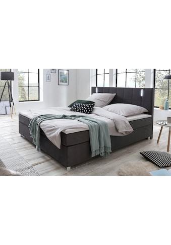 SalesFever Bett, mit LED-Beleuchtung im Kopfteil, Lounge Bett in weichem Samtvelours,... kaufen