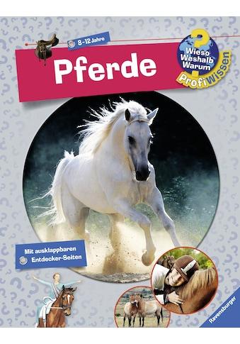 Buch »Pferde / Andrea Schwendemann, Maria Mähler, Billa Spiegelhauer« kaufen