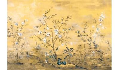 Komar Fototapete »Mandarin«, bedruckt-floral kaufen